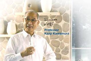 http://www.diamond.com.sg/professor.jpg